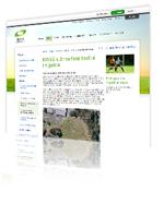 Visit the webiste
